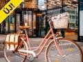Vintagebringa Koppenhága